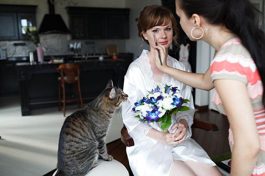 Кот помогает красить невесту